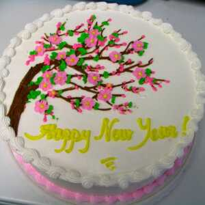 New Year 39 s Cake Decorating Ideas monfloor guide tips