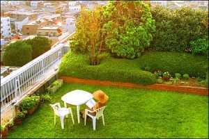 Terrace Garden Want A Terrace Garden At Your Home