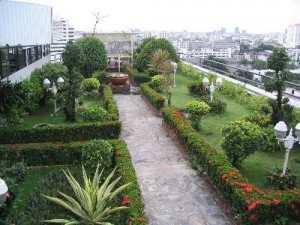 Terrace garden want a terrace garden at your home for Terrace 33 city garden