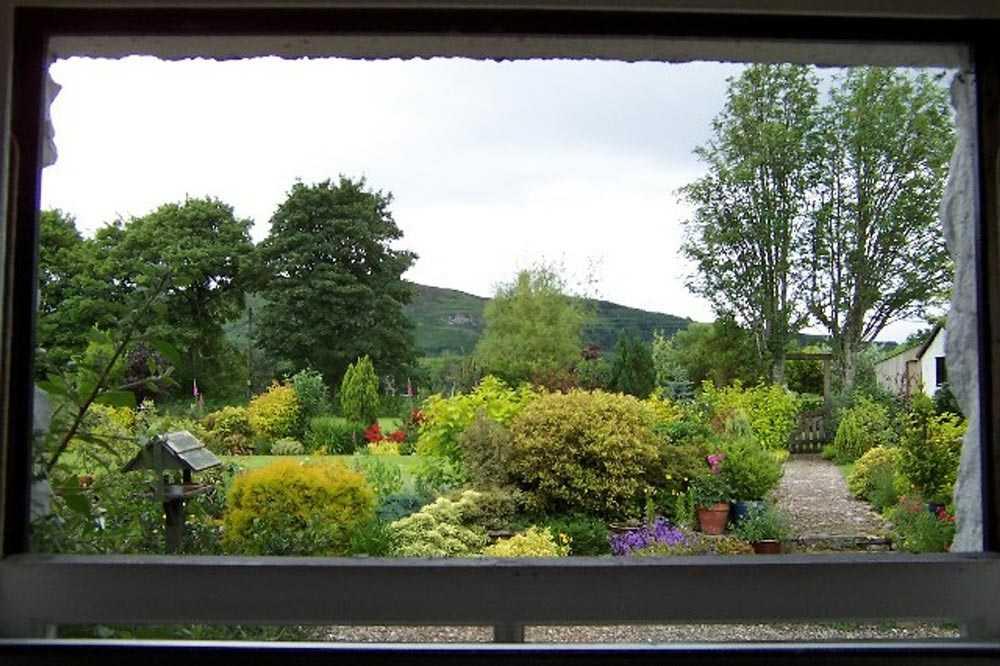 Enhance Window View Outdoor And Indoor Of Your Home