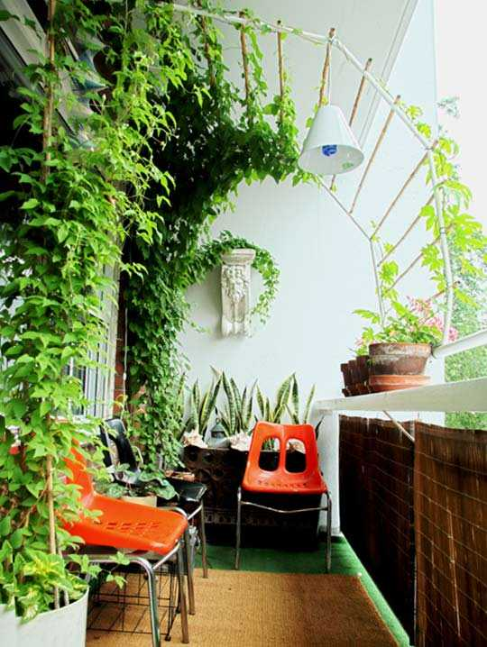 Add Glamour To Home Decor With Indoor Plants