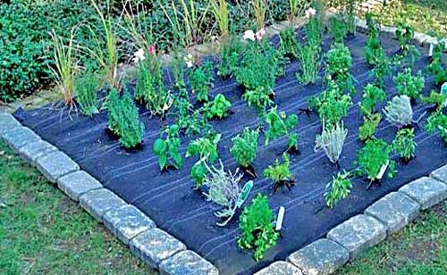garden care easy steps to use a weed barrier in your garden. Black Bedroom Furniture Sets. Home Design Ideas